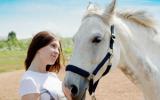 Bachblütenmischung Nr. 120 Stress bei Pferden